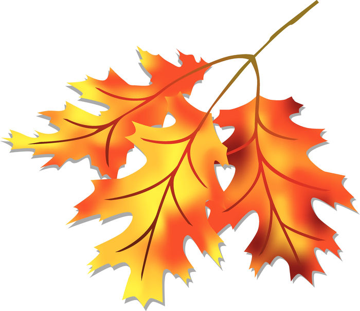 Animated Pictures Of Autumn Leaves