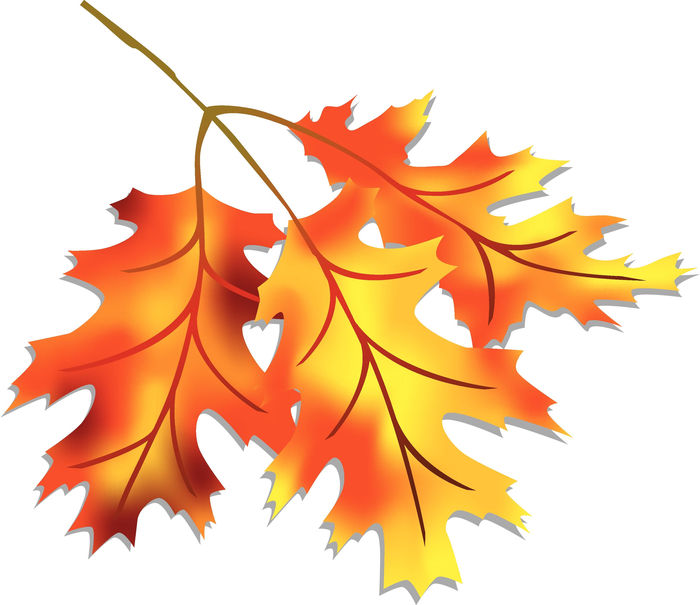 Animated Pictures Of Fall Leaves