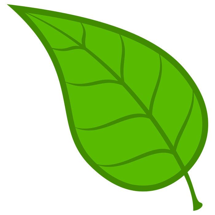 Animated Pictures Of Green Leaves