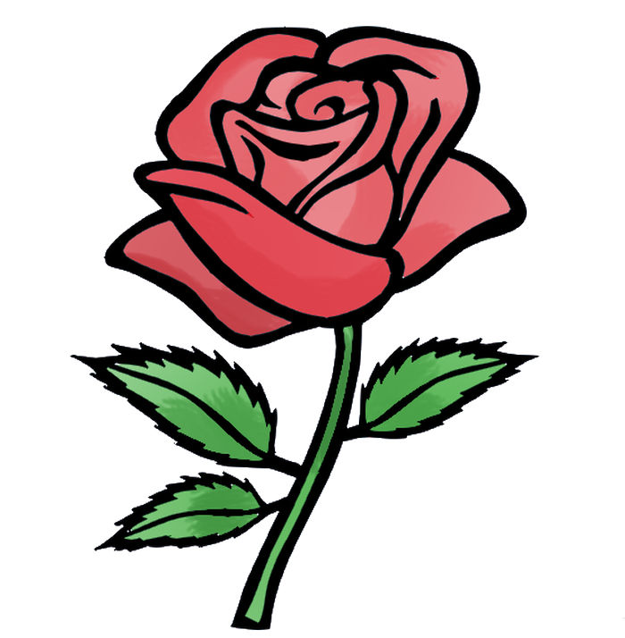 Animated Rose Pictures