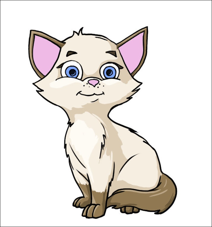 Cat Animated Images