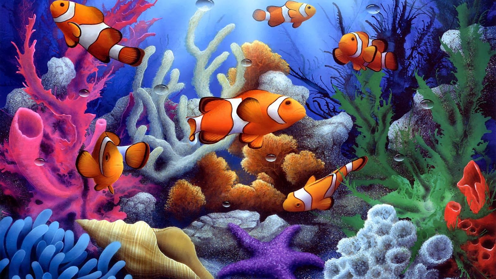 Fishes Computer Wallpapers