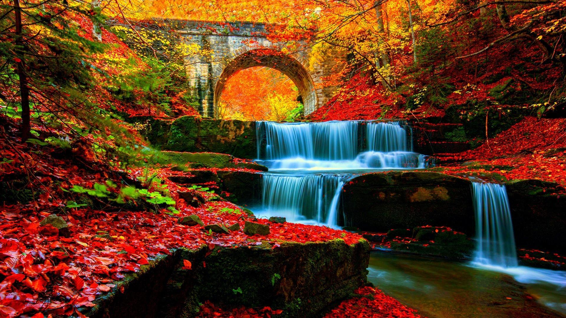 Waterfall In Autumn Wallpapers