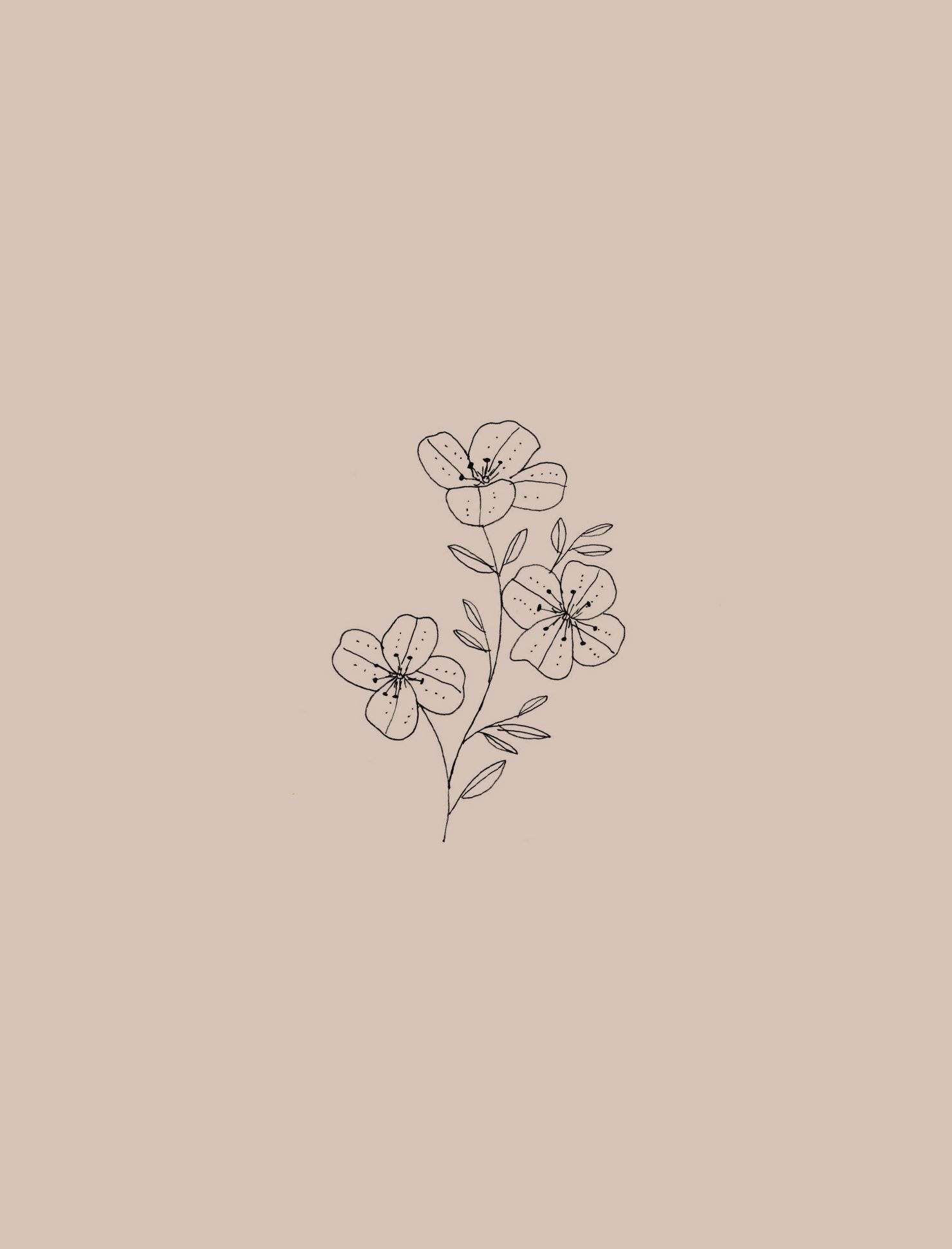 Aesthetic Flower Drawing Wallpapers