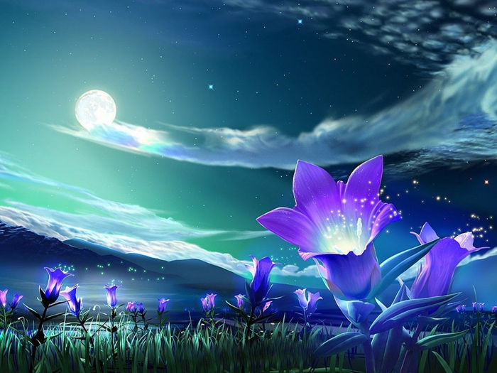 Animated Flower Images Hd