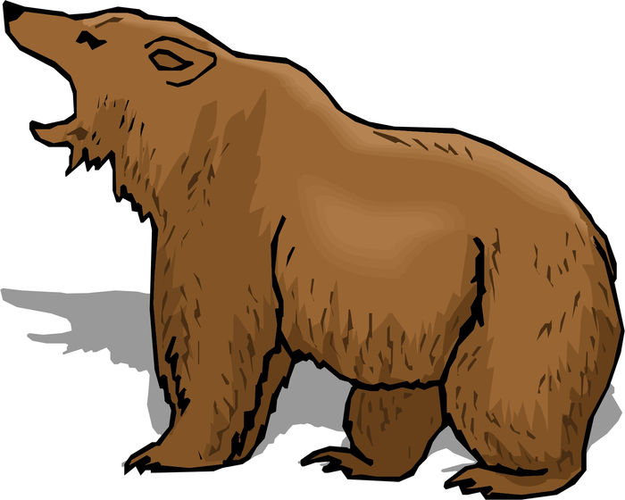 Animated Images Of Bear