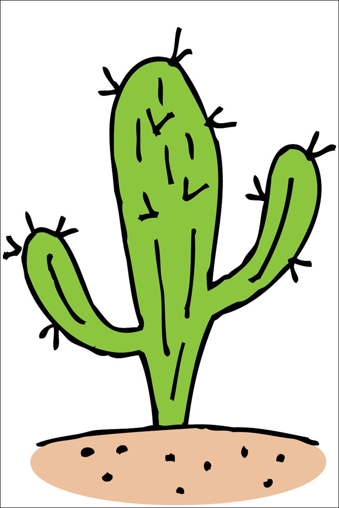 Animated Cactus Images