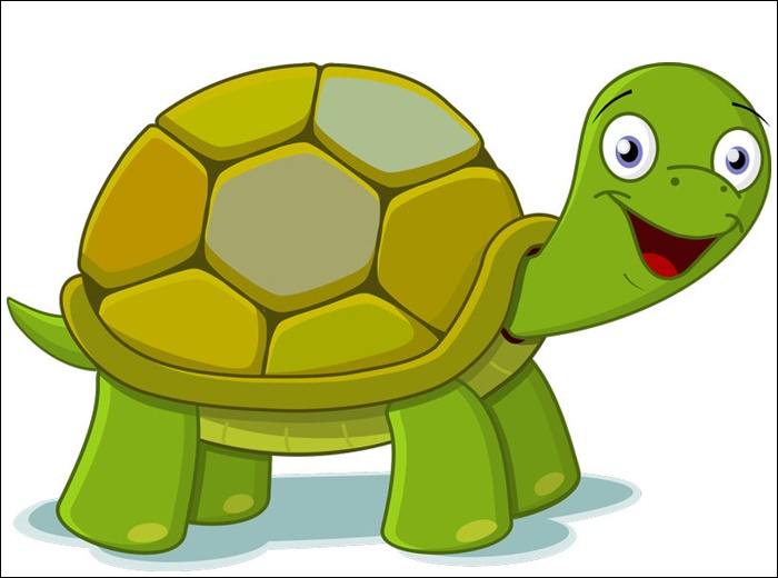 Animated Images Of A Turtle