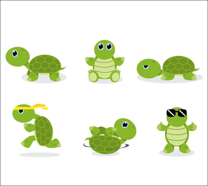 Animated Images Of Cute Turtle