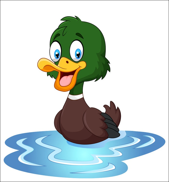 Animated Images Of Duck