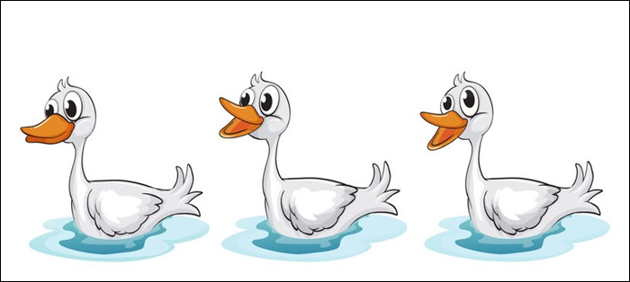 Animated Images Of Ducks