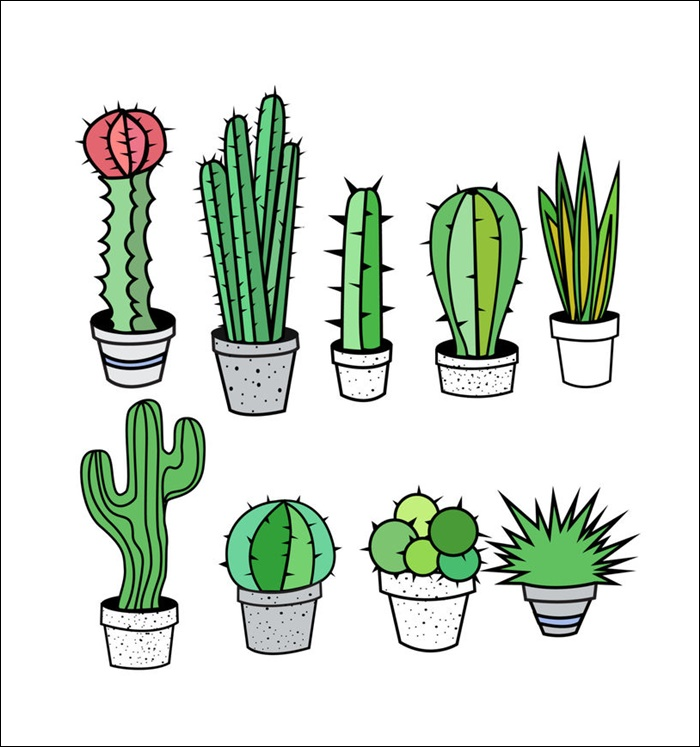 Animated Pictures Of Cactus