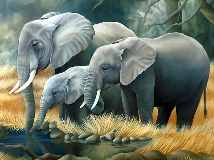 Animated Pictures Of Elephants