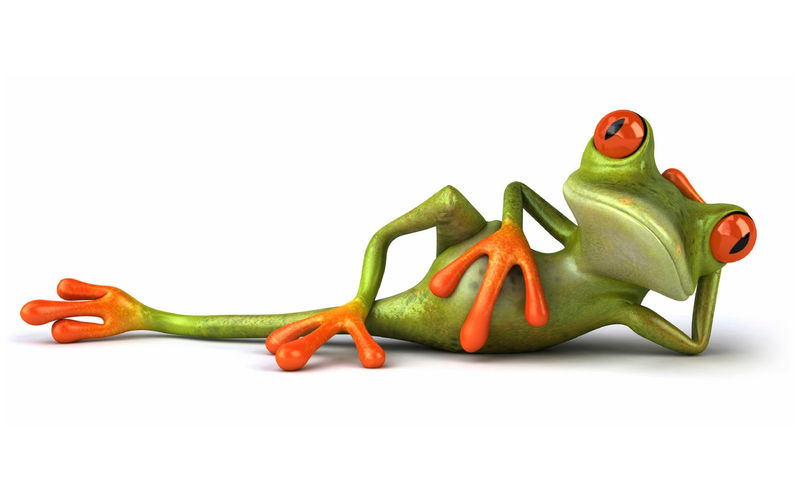Animated Pictures Of Sleeping Frog