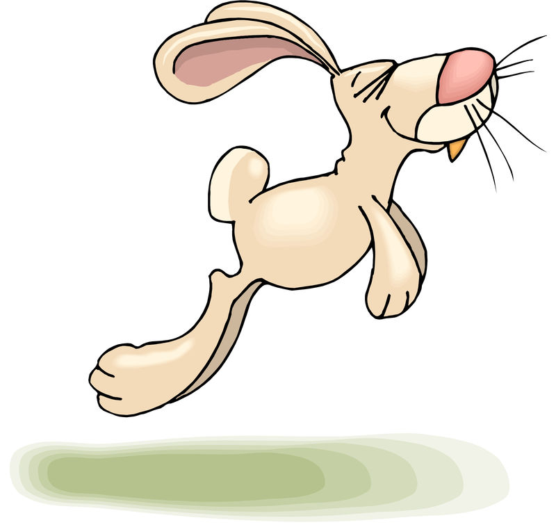 Cartoon Rabbit Drawing Pictures