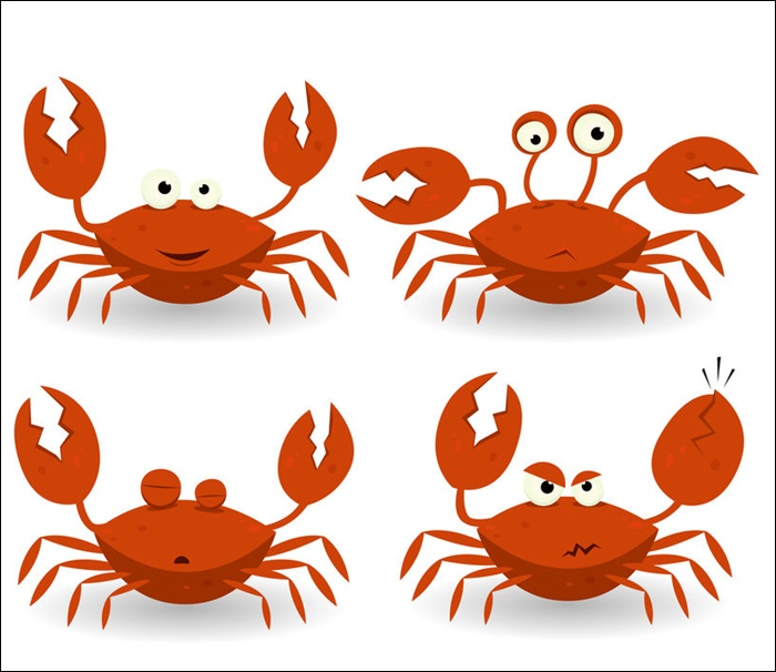 Crab Animated Pictures