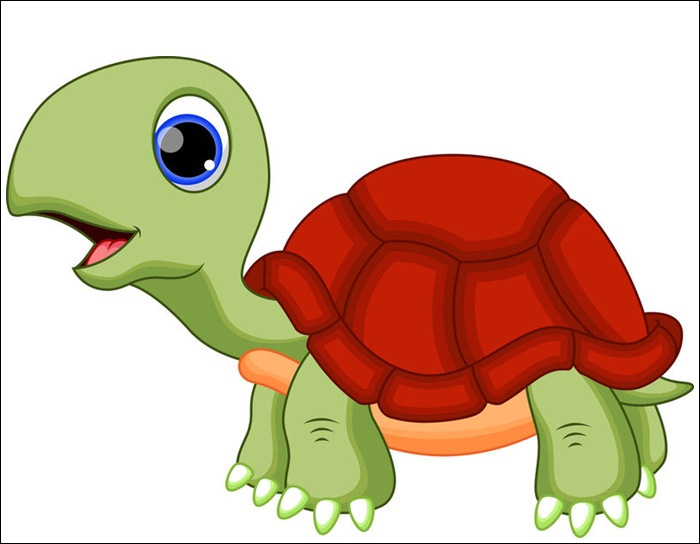 Cute Turtle Pictures Animated