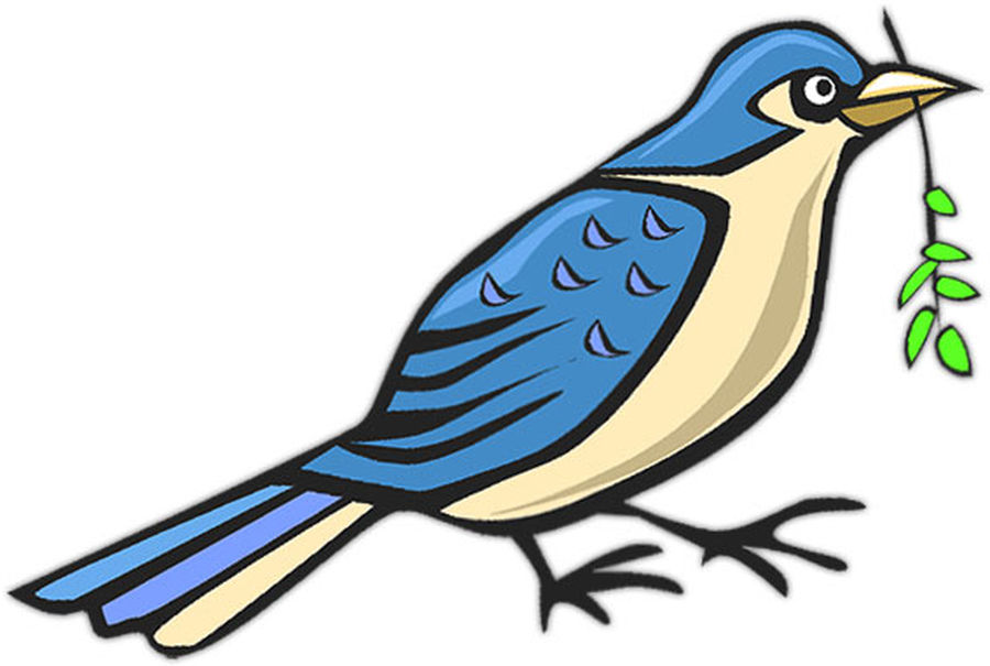 Images Of Animated Bird