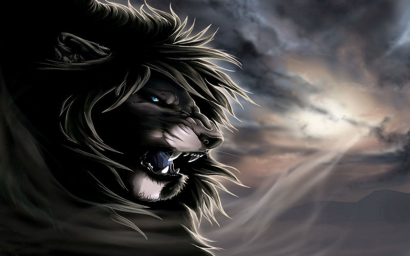 Lion Cartoon Pictures Black And White