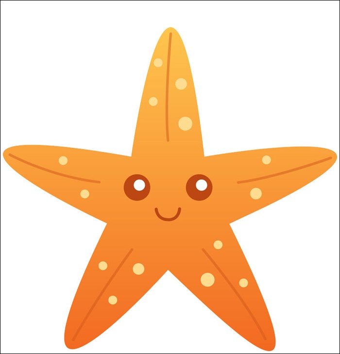 Animated Images Of Starfish