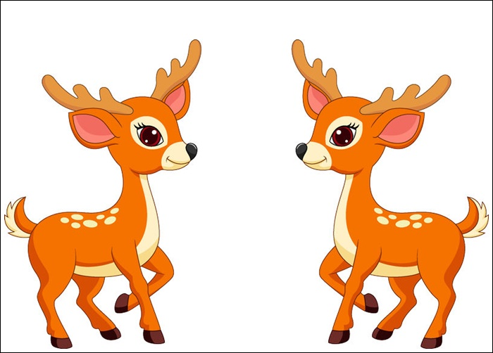 Animated Pictures Of Deer