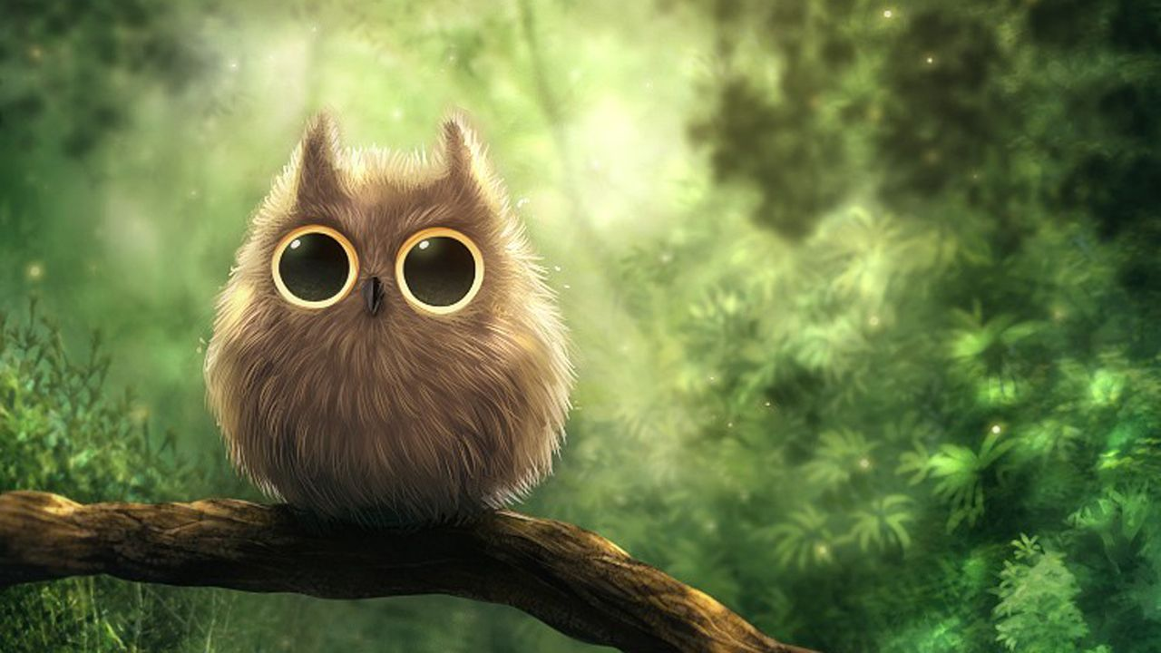 Cute Owls Images