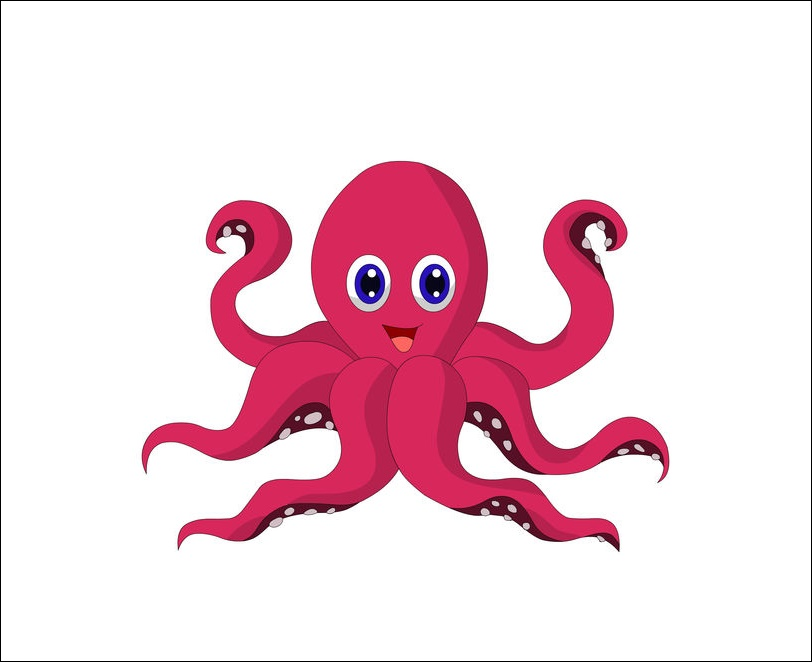Funny Octopus Images