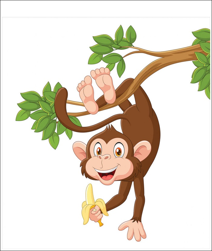 Monkey Banana Pictures Funny