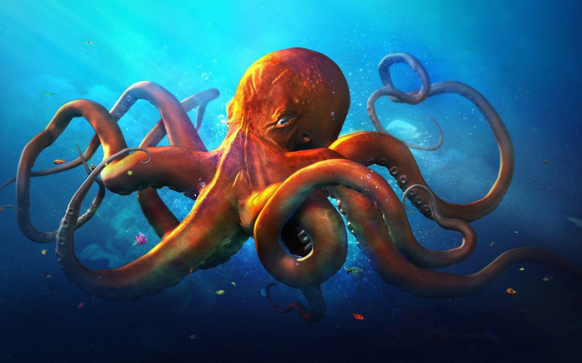 Monster Octopus Images