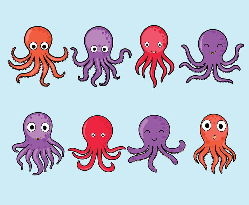 Octopus Images