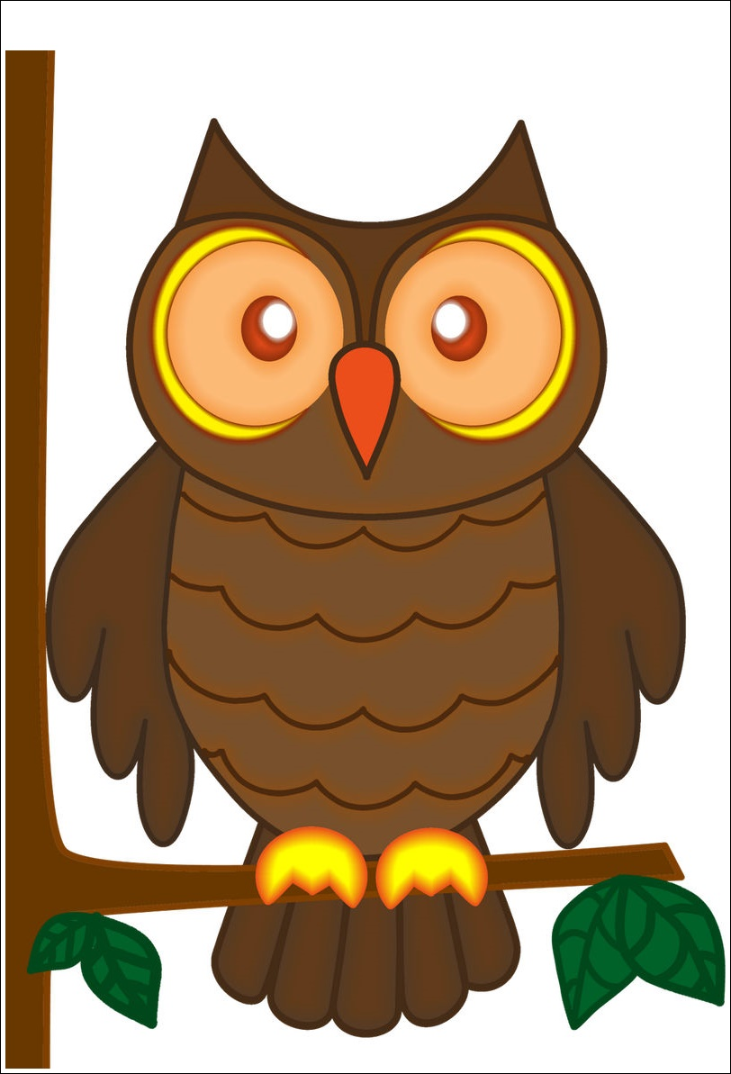Owl Animated Images
