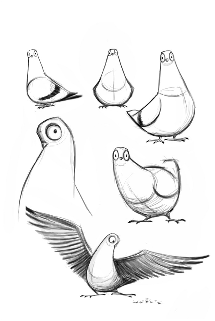 Pictures Of Pigeon Animated