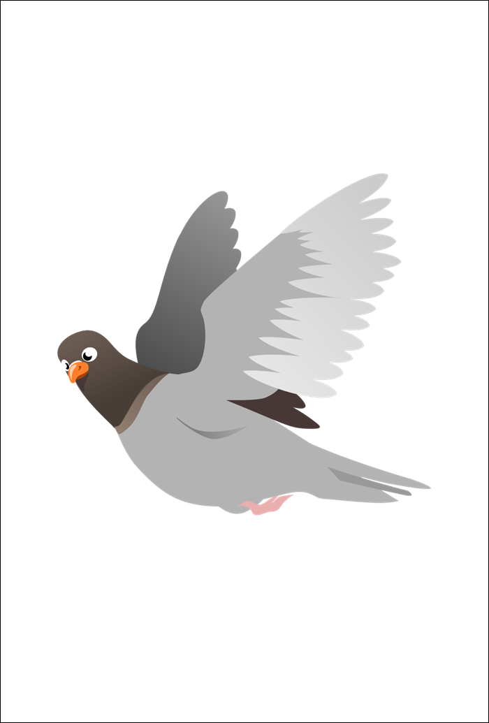 Pigeon Animated Images