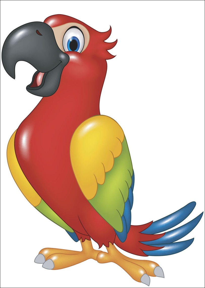 Animated Birds Hd Images