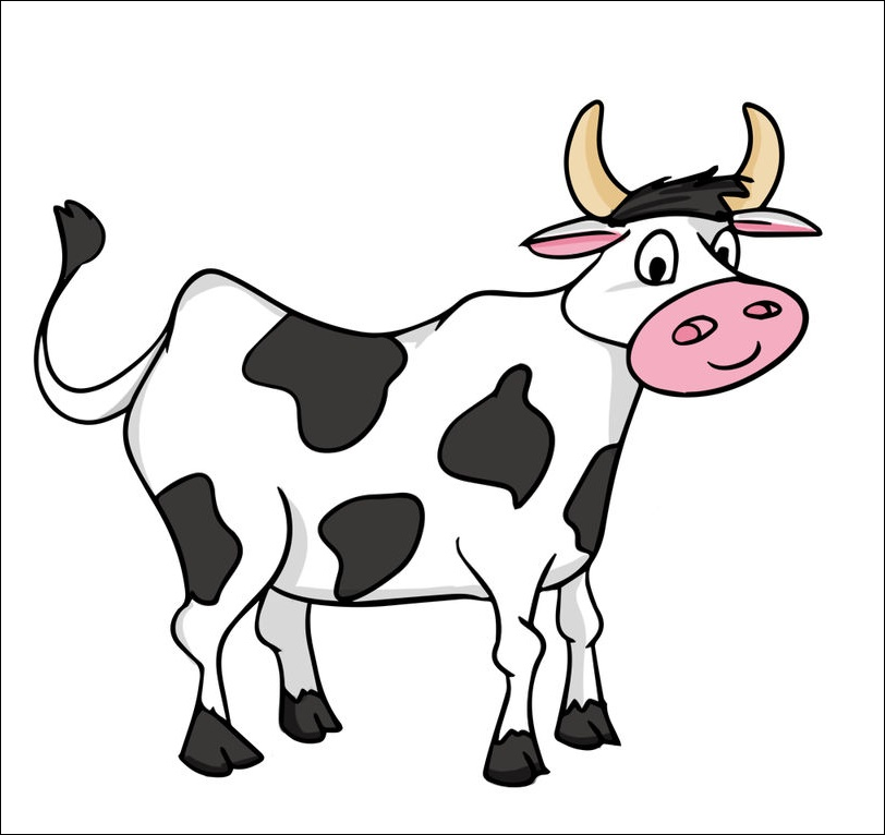 Cow Animated Images