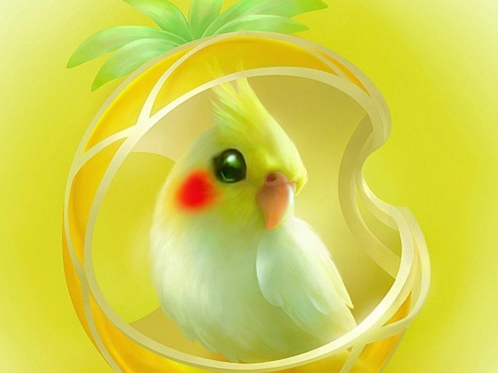 Cute Parrot Wallpapers