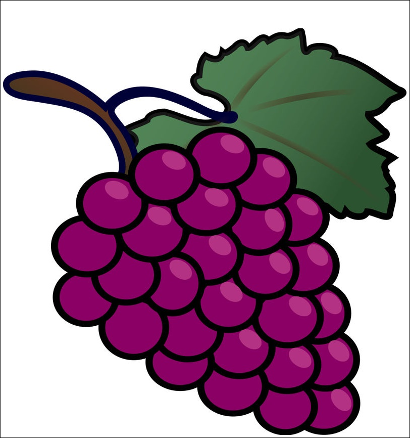 Grape Animated Images
