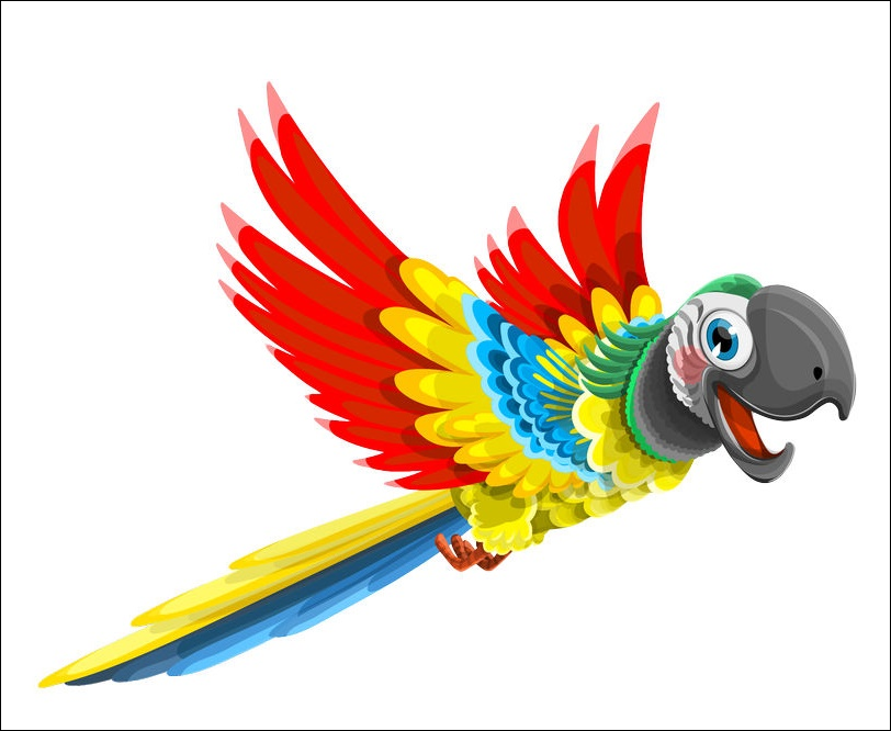 Parrots Animated Images