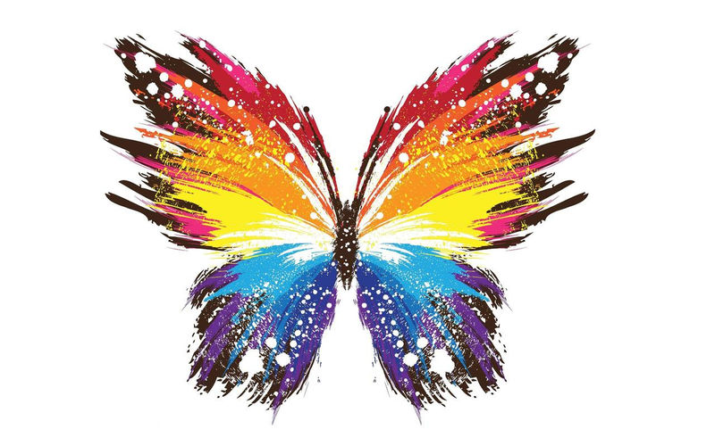 Animated Butterfly Pictures Download