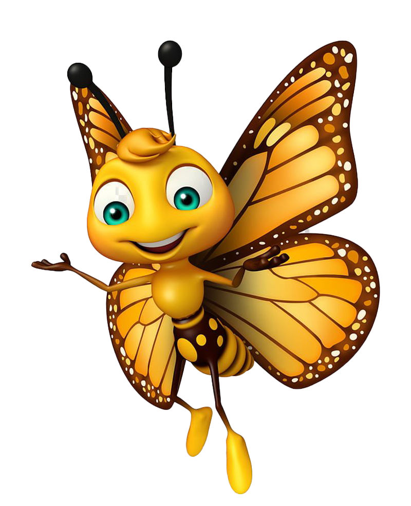 Butterfly Cartoon Pictures