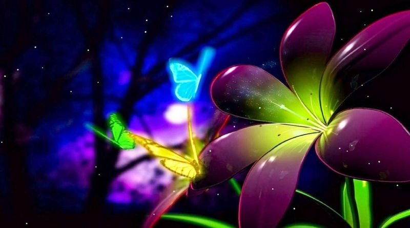 Cartoon Butterfly Pictures And Flowers