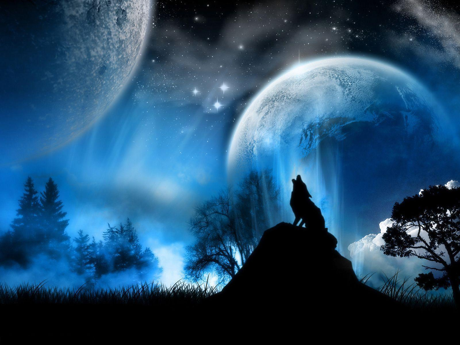 Animated Black Wolf Pictures