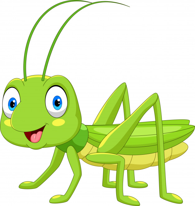 Animated Cute Grasshopper Images
