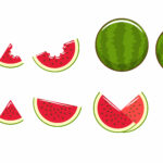 Animated Images Of Watermelon