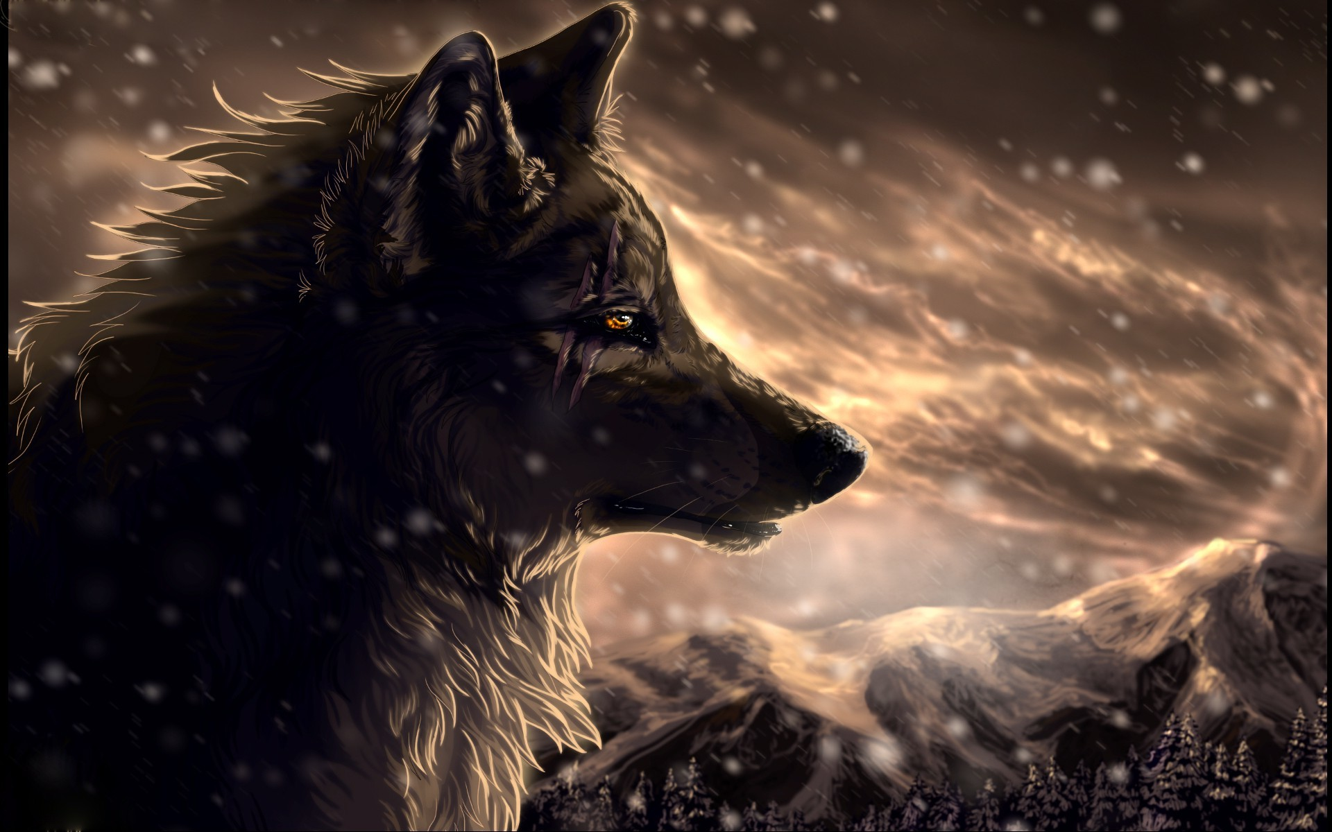 Animated Wolf Pictures