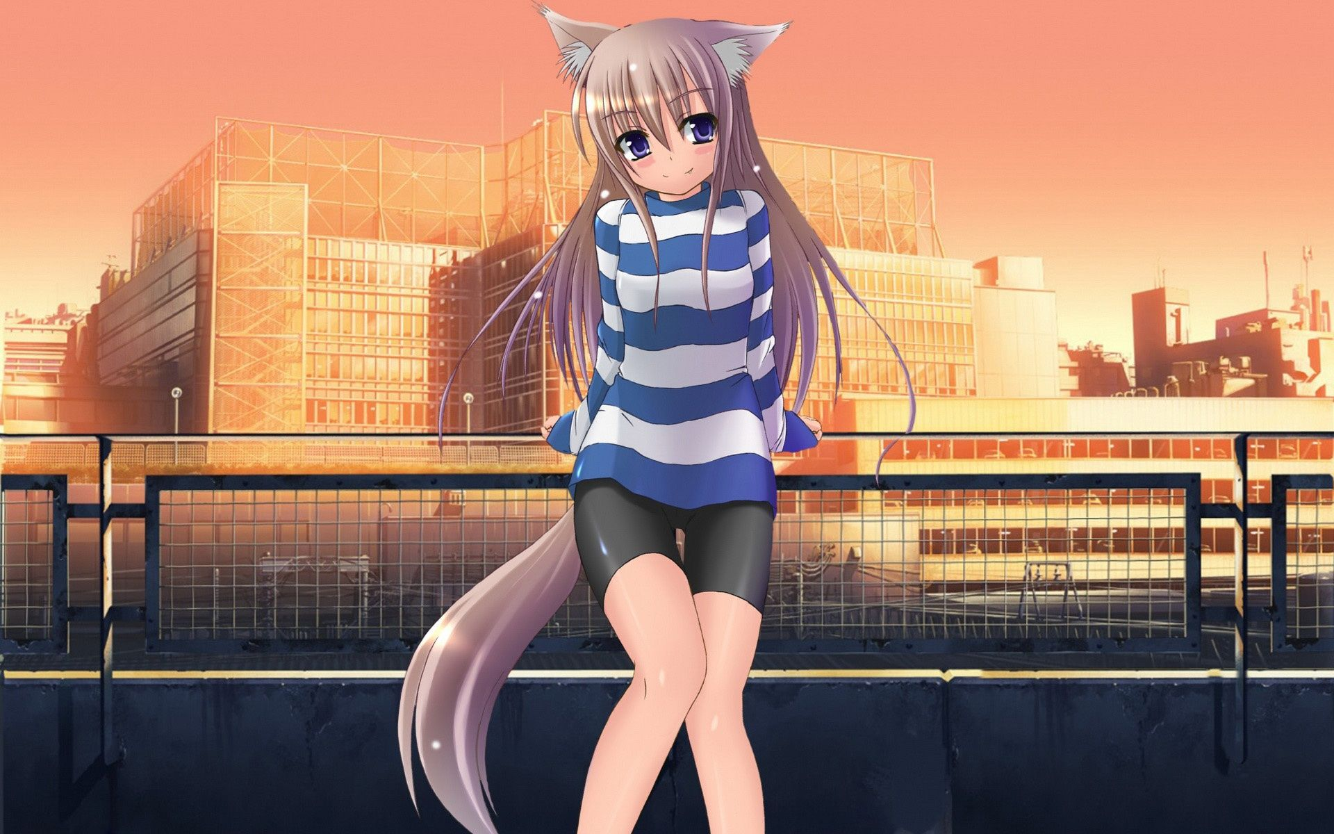 Anime Wolf Girl Pictures Wallpapers
