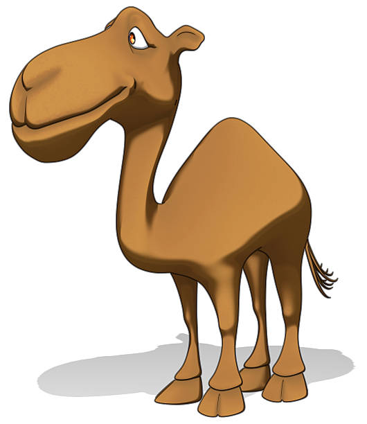 Camel Animated Images