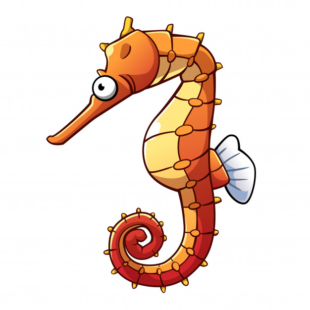 Seahorse Animated Images