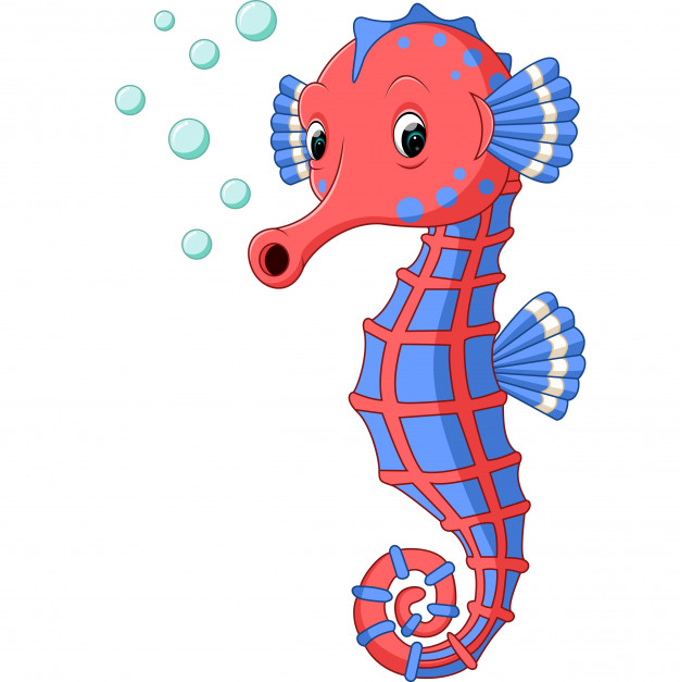 Seahorse Animated Pictures