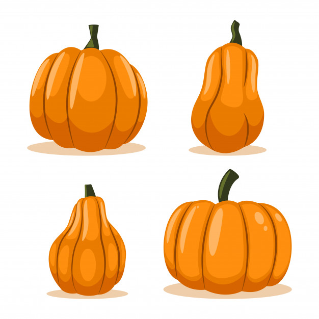 Animated Pictures Of Pumpkin Plant